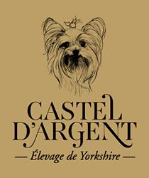 castel-argent-logo-noir-or